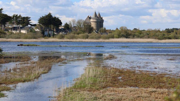 paysage dans le Morbihan
